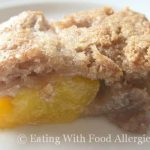 Allergy Free Fruit Buckle
