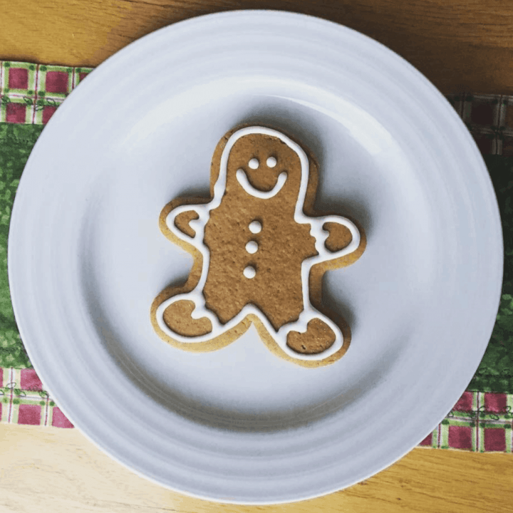 A gingerbread man cookie outlined in white icing