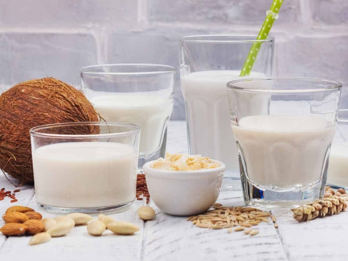 An assortment of dairy free milk substitutes.