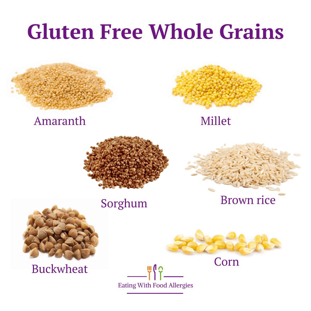 A variety of gluten free whole grains including amaranth, millet, sorghum, brown rice, buckwheat, and corn.