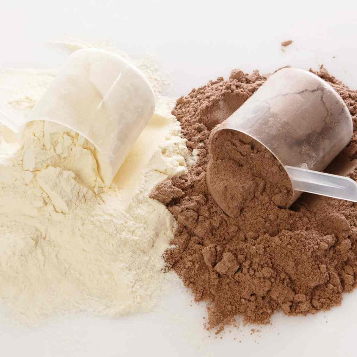 Scoops of allergy free protein powder in vanilla and chocolate flavors