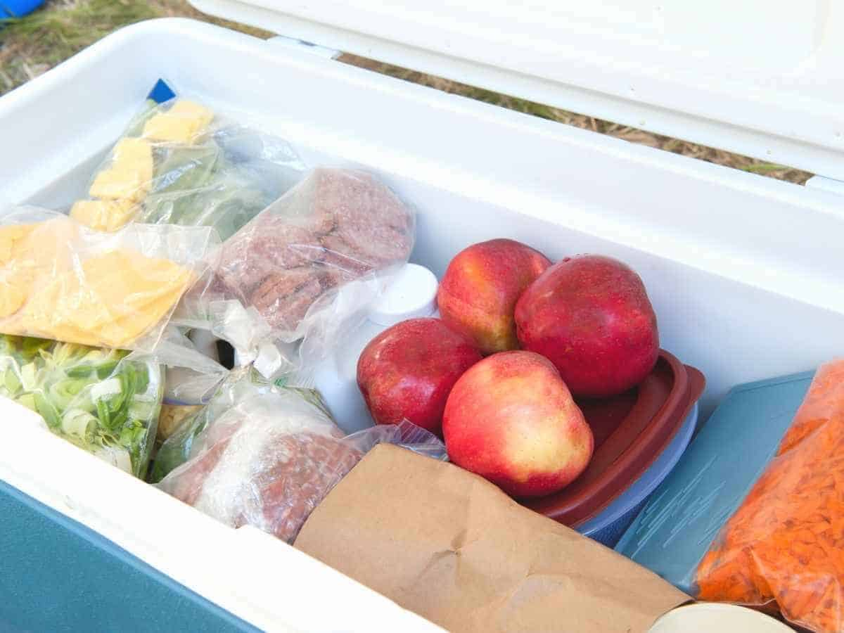A cooler with cold cuts, fruit, and vegetables in it.